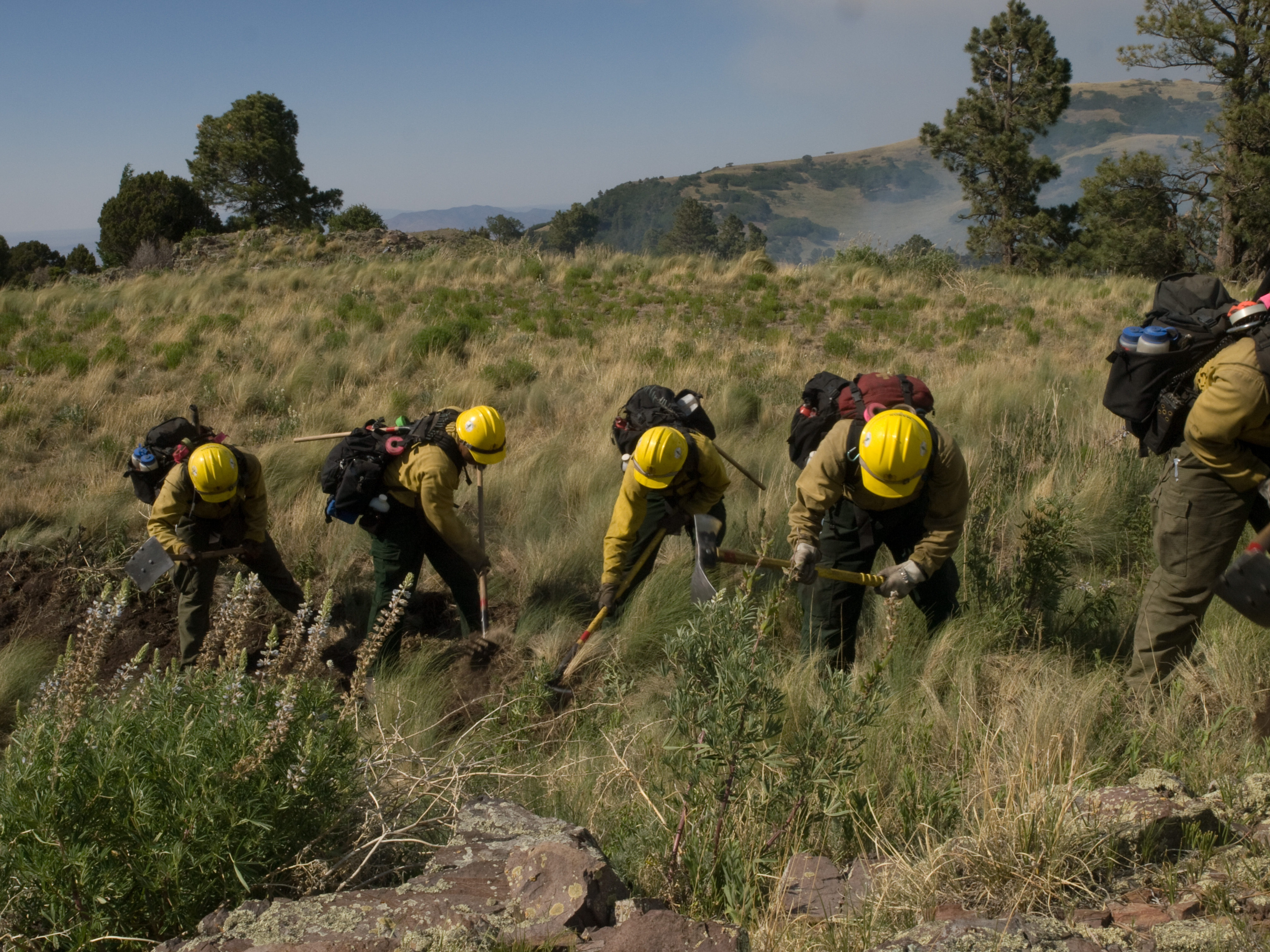 The Springville Hotshots cut fireline on a wildfire in New Mexico.